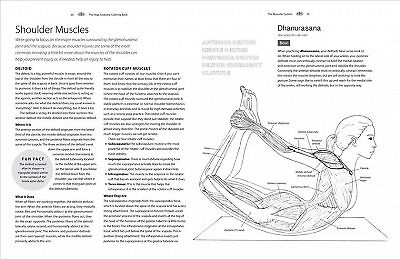 Yoga Anatomy Coloring Book A Visual Guide To Form Function And Movement 9781640210219 Ebay