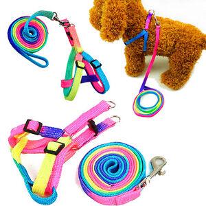 Pet-Puppy-Matching-Nylon-Harness-Collar-amp-Lead-Set-Leash-Adjustable-Rainbow-s