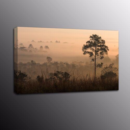 Landscape Canvas Prints New Tree Sunrise Fog Pine Wall Art Painting Home Decor