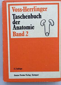 Taschenbuch-der-Anatomie-v-Voss-Herrlinger-Band-2-Verdauungs-Atmungs-Gefaesssy