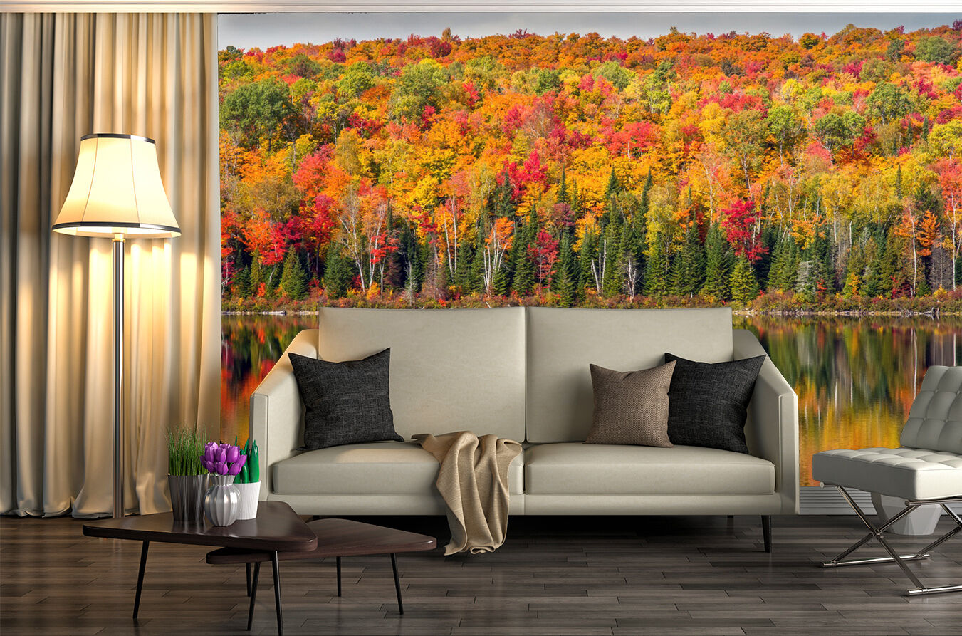 3D Jungle Forest Trees 553 Wall Paper Wall Print Decal Wall Deco Indoor Wall