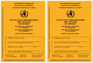 2x Impfausweis Impfpass Impfbuch Internationaler Impfpflicht Masern