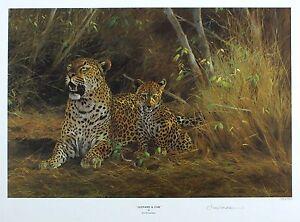 "KIM Donaldson ""Leopard & Cub"" Savannah firmato LIM ED! dimensioni: 40cm x 52cm NUOVO RARO"