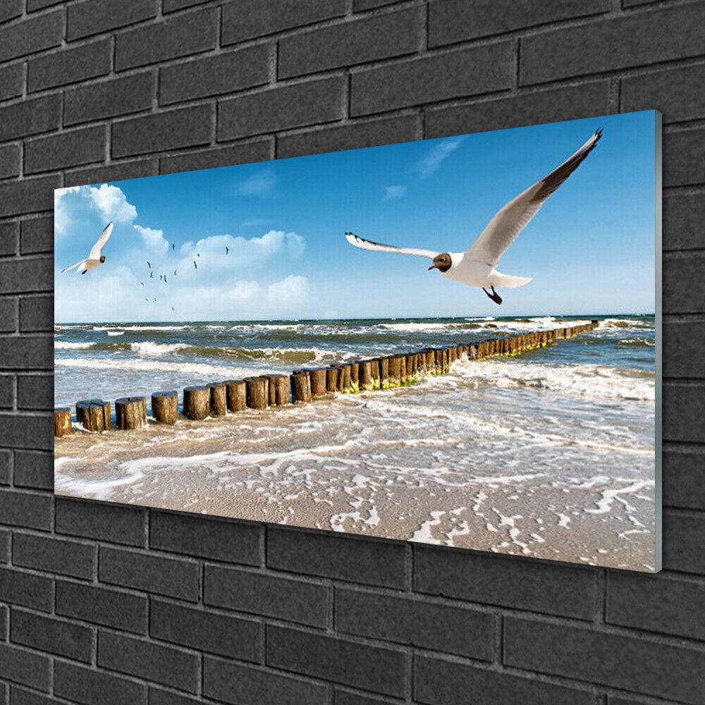 Tableau sur verre Image Impression 100x50 Paysage Mouettes Mer