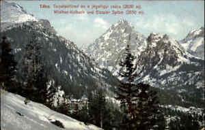 1910-Vintage-Postcard-alte-Postkarte-color-Kolbachtal-Tatra-Wildbad-Kolbach