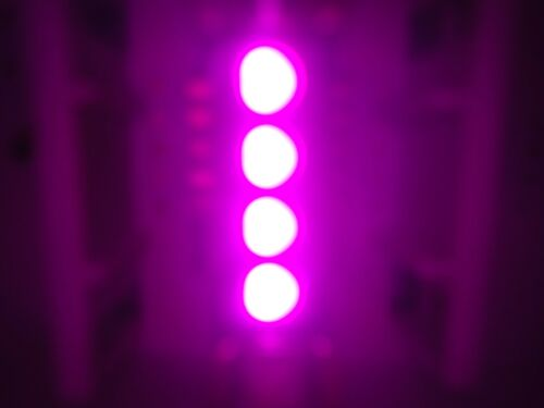 4X 42MM PINK 4SMD 5050 LED DOME MAP LIGHT BULB 211-2 212-2 560 578 4410