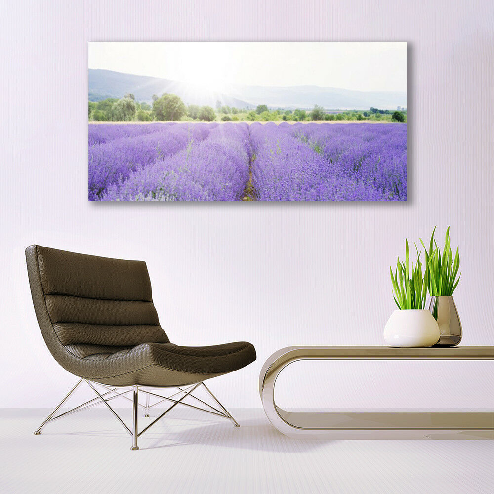 Glass print Wall Wall Wall art 140x70 Image Picture Meadow Flowers Nature abd928