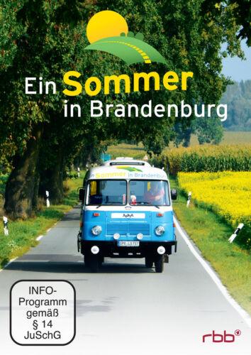 1 von 1 - Ein Sommer in Brandenburg - 2 DVD Box