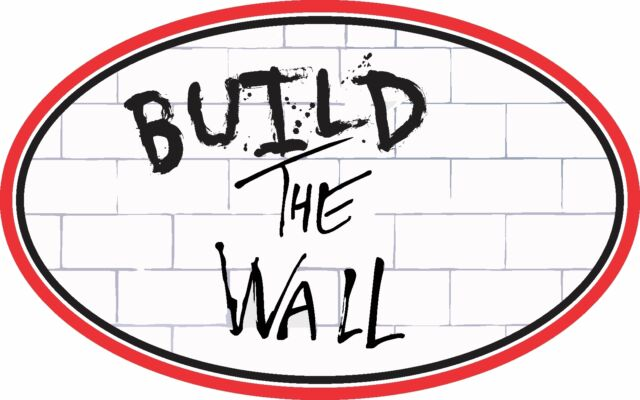 BUILD THE WALL TRUMP DECAL WINDOW BUMPER STICKER POLITICAL