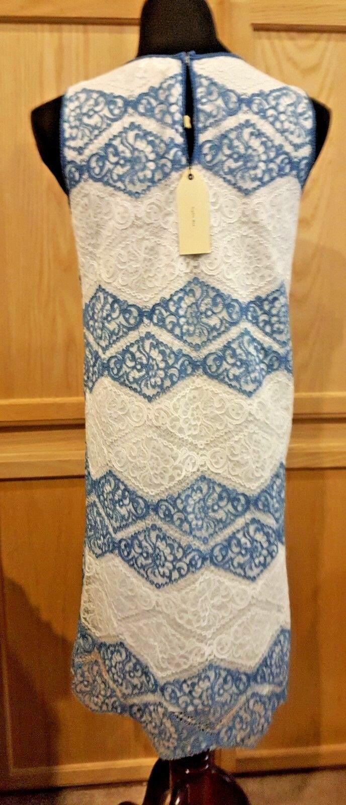 $128 Sophie Max Studio 6B02K69 Blue//White Sleeveless Stretch Lace Shift Dress