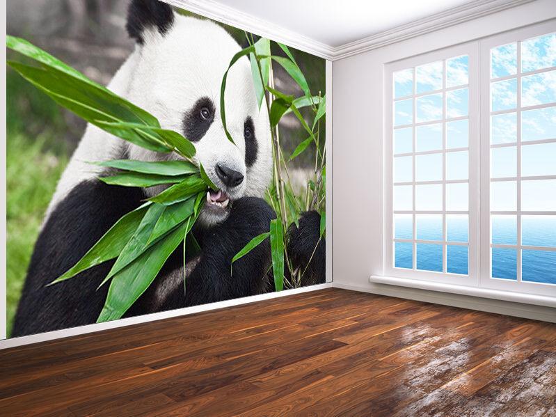 Riesen Panda Ist Eating Bambus Foto Wandtapete Wandgemälde (6574982)