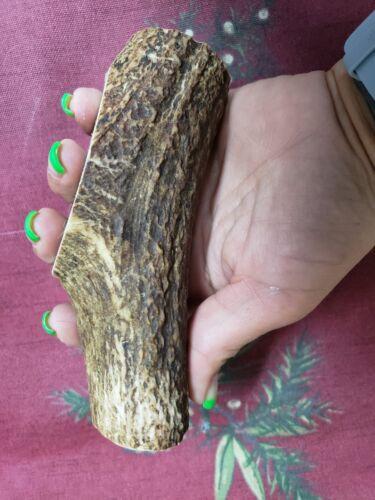 Premium Deer Antler Dog Chews Unsplit