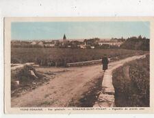 Romanee Saint Vivant Vignoble de Grands Crus France Vintage Postcard 821a