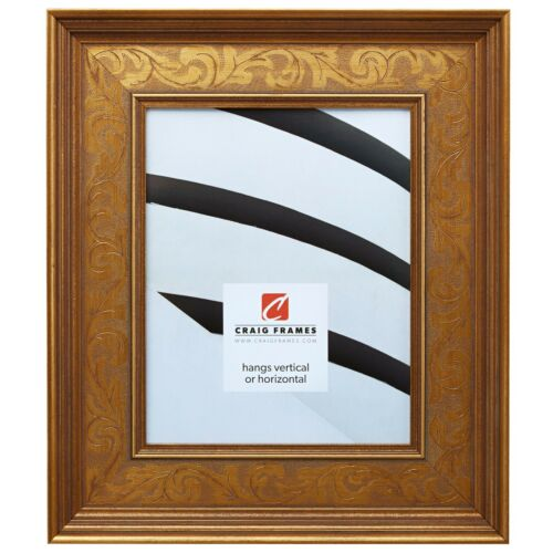 French Country Style Gold Picture Frame Craig Frames Marais II
