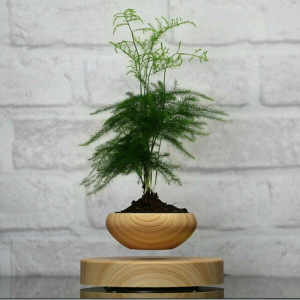 Levitating Floating Spinning Flower Plant Pot High-tech Plant Pot