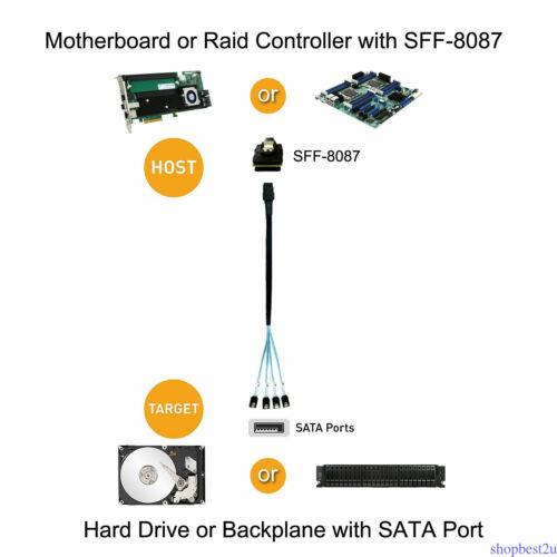 3.3FT Mini SAS 36P SFF-8087 to 4X SATA 7Pin HD Splitter Breakout Blue Cable Best