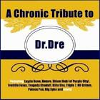 Tribute To Dr Dre/Chronic Tribute To Dr Dre von Various Artists (2010)