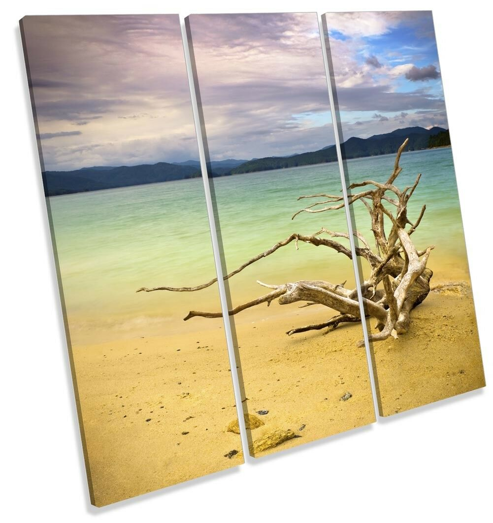Beach Driftwood Seascape Picture TREBLE CANVAS WALL ART Print