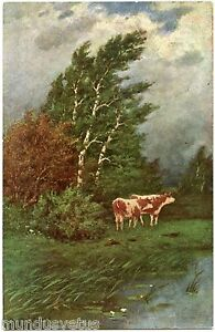Cows-Campagne-Campaign-Cows-Artist-Signed