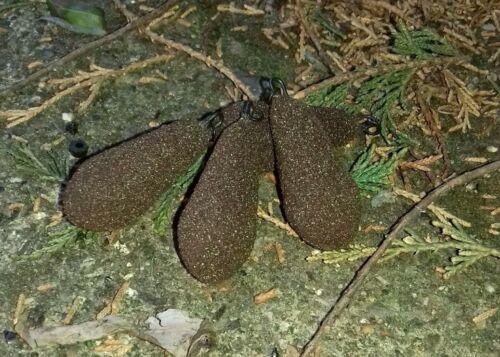 15 X 2.5 oz Heli carp Leads Distance Pears Brown Textured