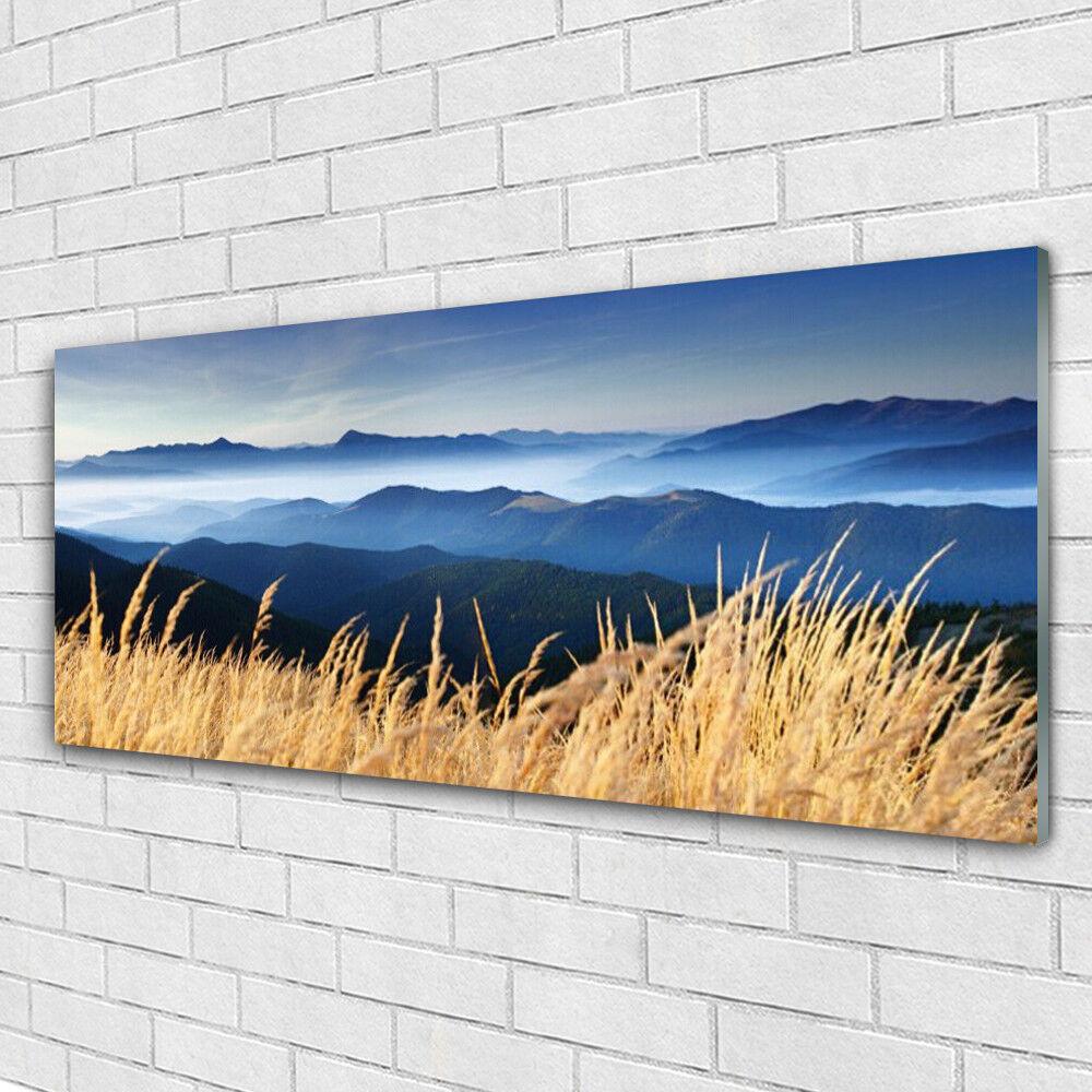 Impression sur verre Image tableaux 125x50 Paysage Champ