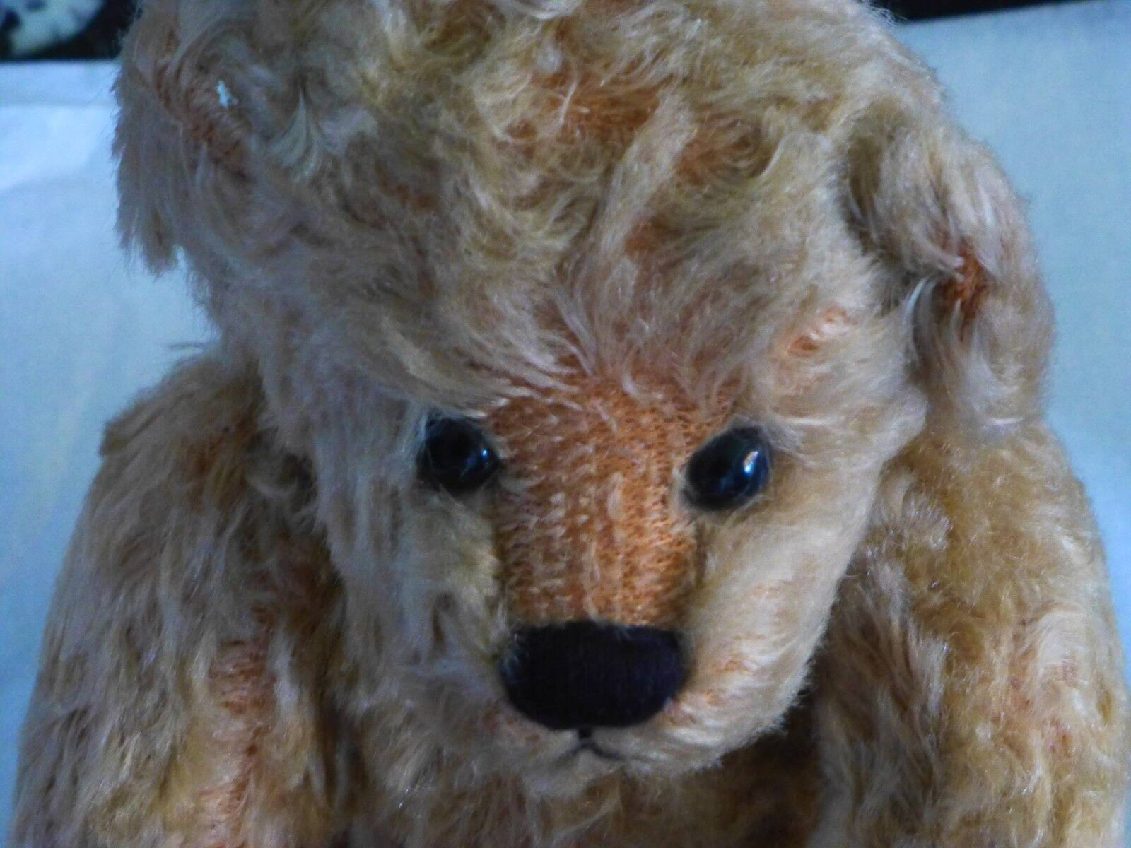 BEAUTIFUL  BEAR  OLD WORN BUT BEAUTIFUL -LOVELY -LOVELY -LOVELY EXPRESSION ON HIS FACE b9c855