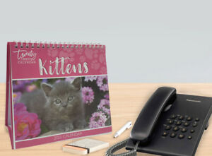 2020 Month to View Desk Calendar Home Office Table Work Planner KITTENS