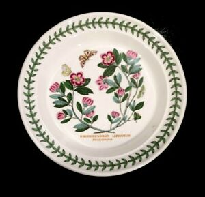 Beautiful-Portmeirion-Botanic-Garden-Rhododendron-Bread-Plate