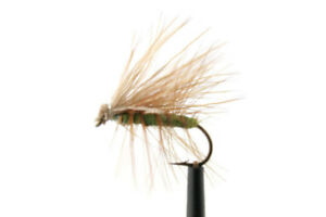 Olive Elk Hair Caddis Dry Fly Brown Rainbow Trout Still Water River Fly Fishing