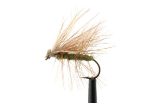 OLIVE Elk Hair Caddis Dry Fly Marrone Trota Iridea ancora ACQUA FIUME PESCA A MOSCA