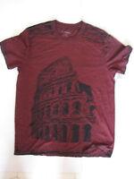 Caesars Palace Las Vegas Nevada Men's Size Large T-shirt Colosseum Burnout