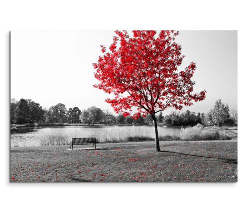 Leinwandbild 120x80cm auf Keilrahmen Baum,schwarz-weiß,rot,See,Bank,Ruhe