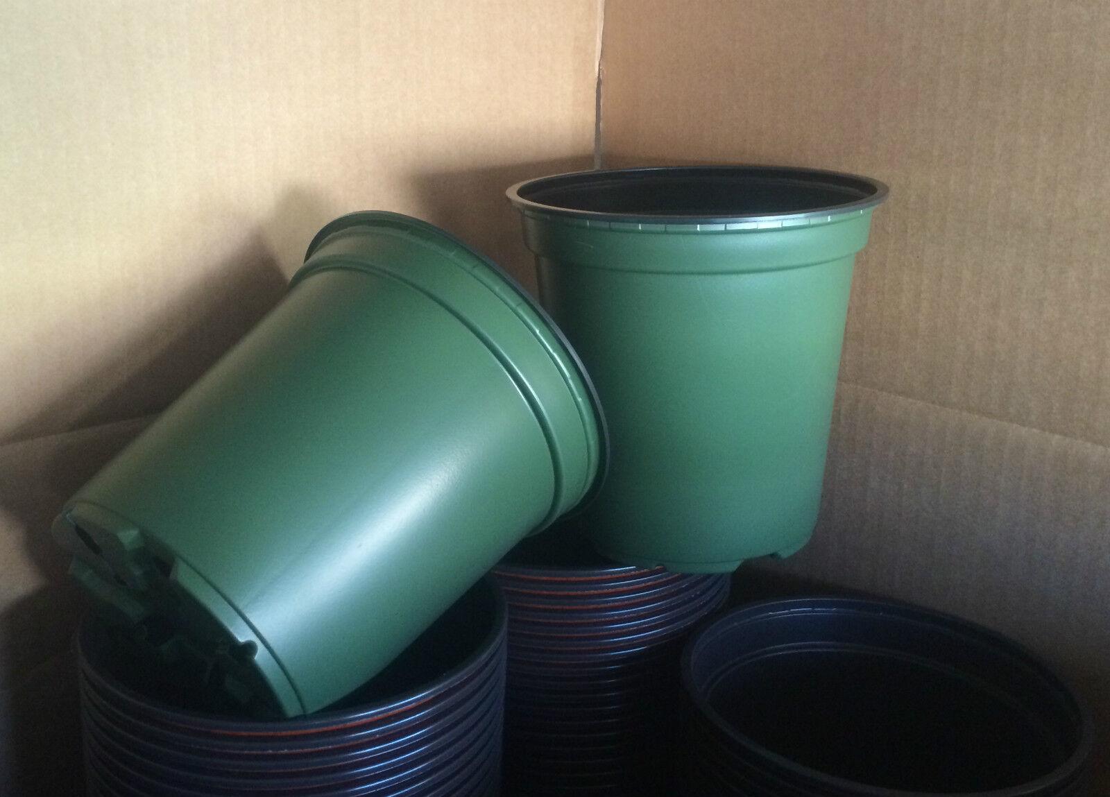 1 galones 6  X 6  Vivero de plástico Jardín de Plantas Macetas - 100 cantidad