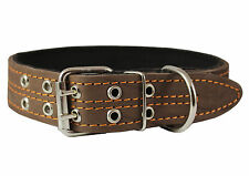 Genuine Leather Dog Collar Padded Brown 1 5 Wide Fits 1418 Neck Size