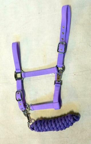 HORSE Economy 10 pretty color Nylon Halter Non Padded Matching lead SET o//5 or 1