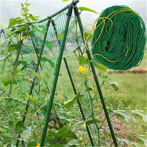 Garden Green Nylon Trellis Netting Support Climbing Bean Plant Nets Grow Fence—Q