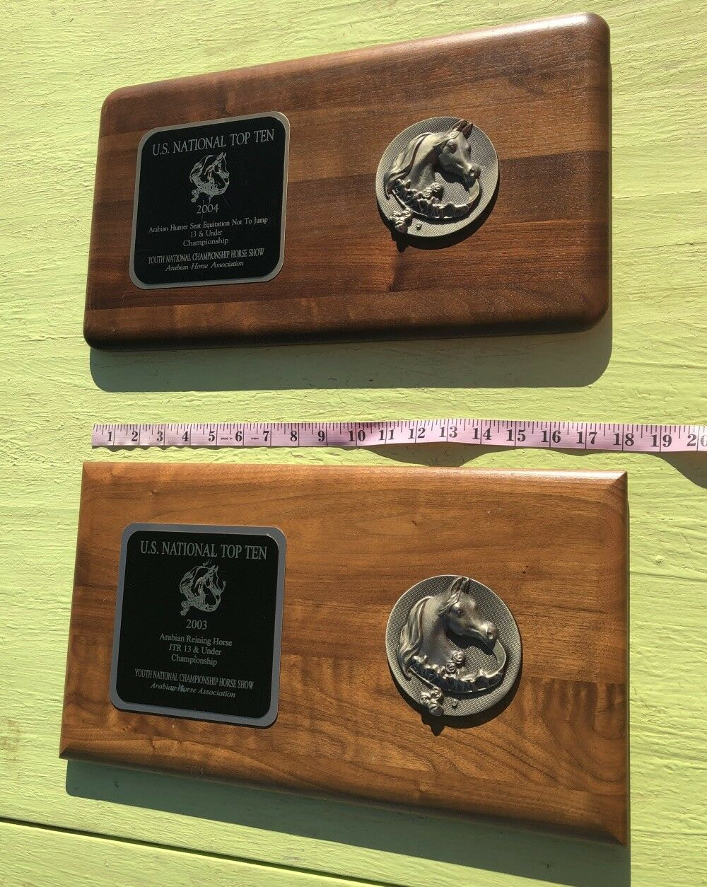 US National Top 10 Arabian Horse Show Award Plaque medallion on wood Lot of TWO