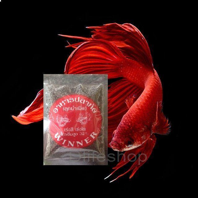 Super Premium Betta Food 10g -MOSQUITO LARVA  GRANULE FIGHTING FISH BUY 4,1 Free