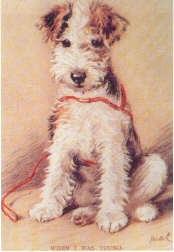 MATTED Dog Print Fox Terrier Pup Lucy Dawson NEW