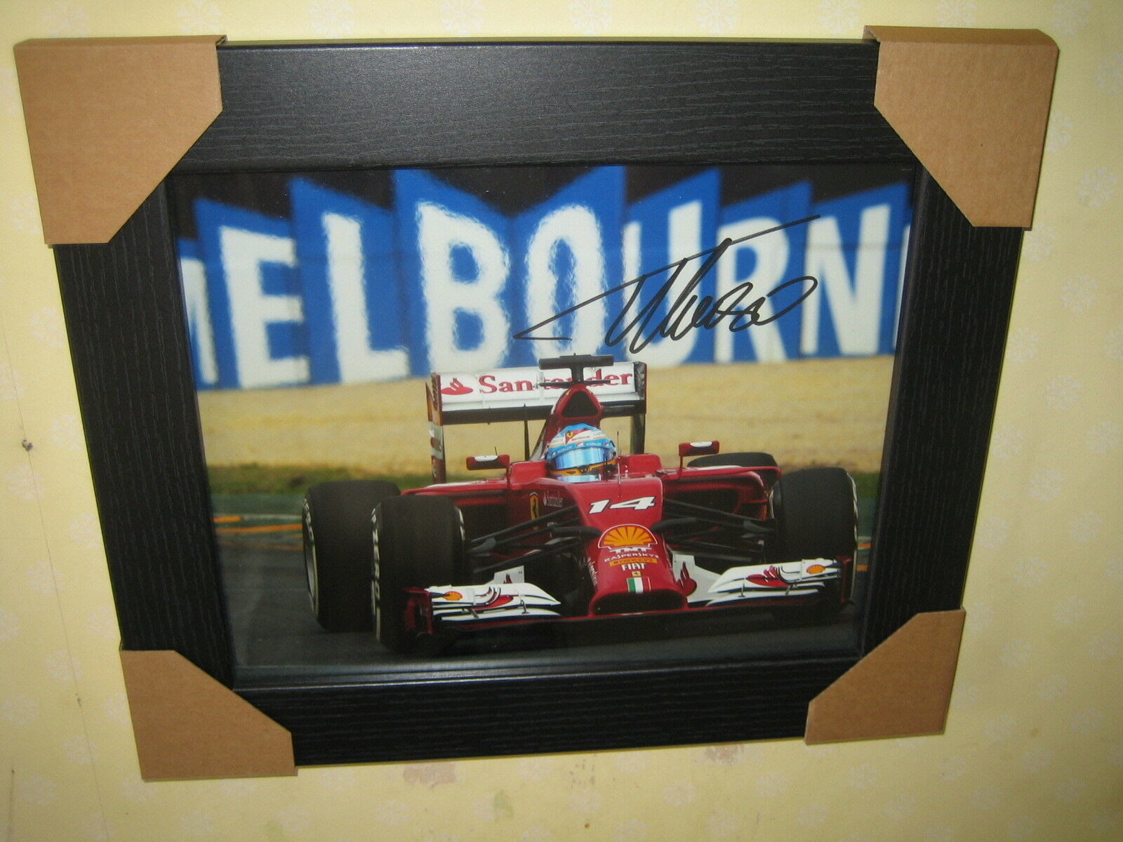 Fernando Alonso Excellent Signed Photograph (10x8) Framed With CoA
