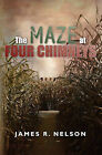 The Maze at Four Chimneys by James R Nelson (Paperback / softback, 2011)