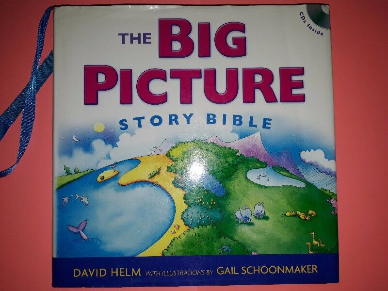 The Big Picture Story Bible - David Helm.