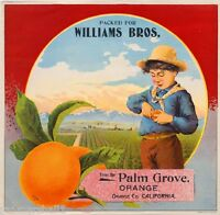 Orange County Palm Grove Orchard Boy Orange Citrus Fruit Crate Label Art Print