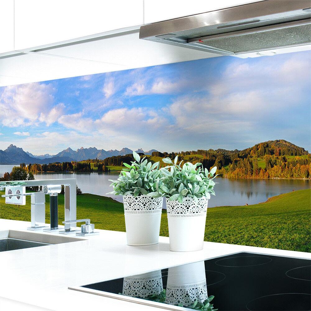 Pannello Pannello Pannello Posteriore Cucina fresca Premium duro-PVC 0,4 mm Autoadesivo adc16f