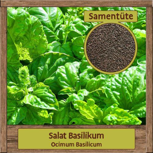 Bio Herbal Seeds Seed Varieties Mix Dill Basil Parsley Cress Rucola