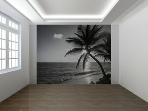 Details About Palm Tree On The Beach Black And White Photo Wallpaper Wall Mural 40060338