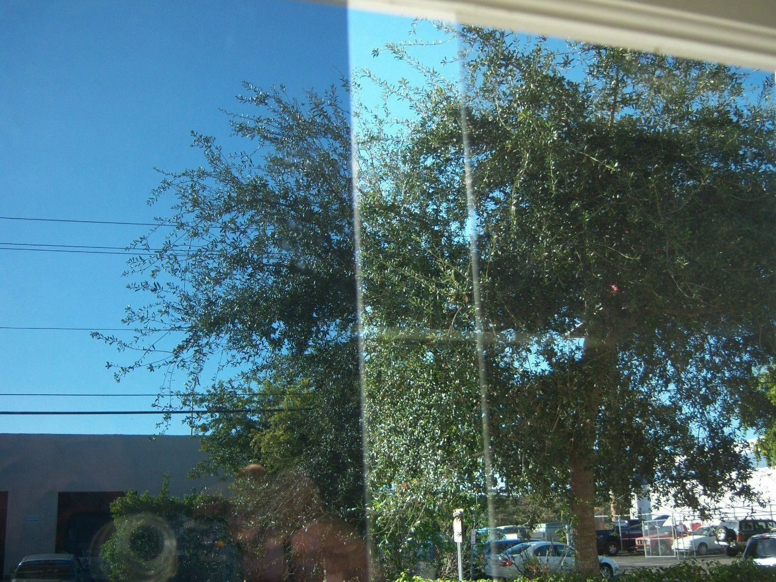 """8 Mil Clear Security Window Film 30/"""" Wide x 25 ft Roll"""