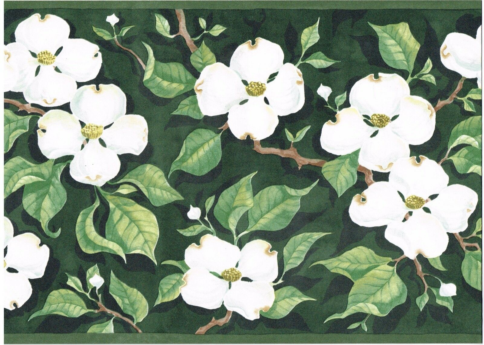 White Dogwood Leaves Branches Green Background Trimwallpaper