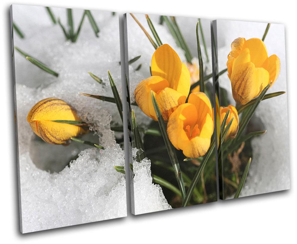 La nuit du carnaval de Noël est plus Snow excitante Flowers In Snow plus Floral TREBLE TOILE murale ART Photo Print 016241