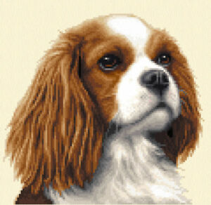 Cavalier king charles spaniel dog cross stitch kit ebay image is loading cavalier king charles spaniel dog cross stitch kit altavistaventures Images